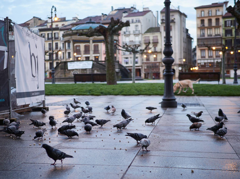 Rues de Pampelune totalement vides pendant la troisième semaine de quarantaine et de confinement total décrétée en Espagne à cause du coronavirus, à Pampelune